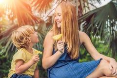 Mamman och sonen hade en picknick i parkera Äta sunda frukter - mango royaltyfria foton