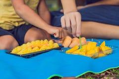 Mamman och sonen hade en picknick i parkera Äta sunda frukter - mango, ananas och melon Barn äter sund mat royaltyfria foton
