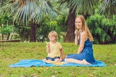 Mamman och sonen hade en picknick i parkera Äta sunda frukter - mango, ananas och melon Barn äter sund mat royaltyfri bild