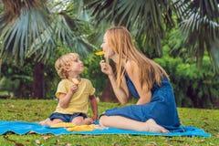 Mamman och sonen hade en picknick i parkera Äta sunda frukter - mango, ananas och melon Barn äter sund mat royaltyfri foto