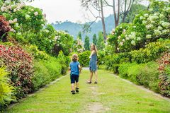 Mamman och sonen kör omkring i den blommande trädgården Lyckligt begrepp för familjelivstil royaltyfria bilder