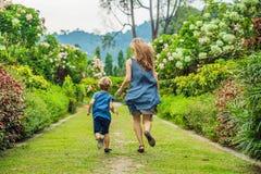 Mamman och sonen kör omkring i den blommande trädgården Lyckligt begrepp för familjelivstil arkivfoto