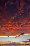 Mammatus fördunklar på solnedgången framåt av den våldsamma åskvädret Fotografering för Bildbyråer