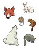 Mammiferi del giardino zoologico illustrazione vettoriale