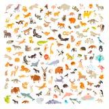 Mammiferi del mondo Stile del fumetto degli animali, icona dei mammiferi illustrazione di stock