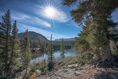 Mammoetmeren tijdens een zonnige dag in Californië stock afbeeldingen