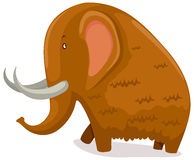 Mammoth Royalty Free Stock Images
