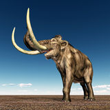 Mammoth Royalty Free Stock Photography