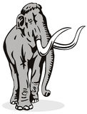 Mammoth with big tusk. Vector art of a Mammoth with big tusk vector illustration