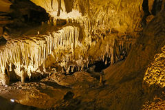 Mammoth Cave National Park Royalty Free Stock Image