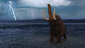 Mammoth Royalty Free Stock Photos