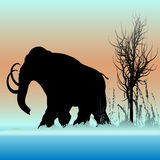 Mammoth Dawn. Background illustration of a Mammoth walking through the ice age stock illustration