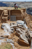 Mammoth fossil. SERBIA, KOSTOLAC, 06. jun 2009. - A finely preserved skeleton of a mammoth, believed to be one million years old, was uncovered near an stock photography