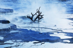 Mammoth Hot Spring Royalty Free Stock Photos