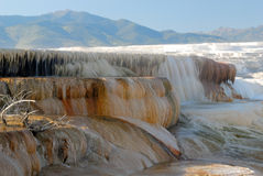 Mammoth hot spring Stock Photography