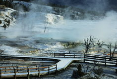 Mammoth hot spring Stock Images