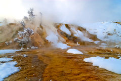 Free Mammoth Hot Spring Terraces Royalty Free Stock Image - 23921546