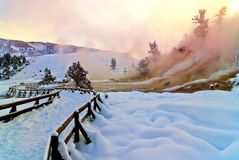 Free Mammoth Hot Spring Terraces Royalty Free Stock Photos - 23921558