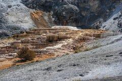 Mammoth Hot Spring Terraces at Yellowstone National Park Wyoming USA Royalty Free Stock Photo