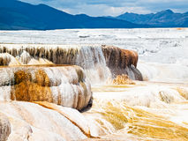 Mammoth Hot Springs -黄石NP 库存图片