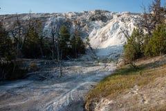 Mammoth Hot Springs, национальный парк Йеллоустона стоковые изображения