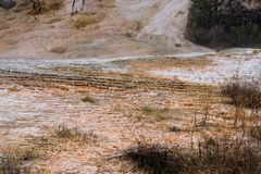 Mammoth Hot Springs Photo stock