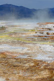 Mammoth Hot Springs photographie stock libre de droits