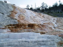 Mammoth Hot Springs Image libre de droits
