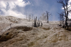 Mammoth Hot Springs Stockfotos