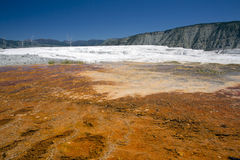 Mammoth Hot Springs Stock Images