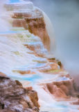 Mammoth Hot Springs Fotografie Stock