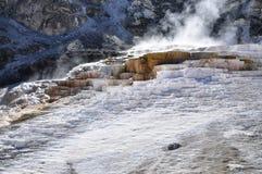 Mammoth Hot Springs Royaltyfria Bilder