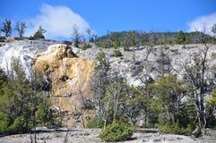 Mammoth Hot Springs Arkivbild