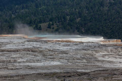 Mammoth Hot Springs Imagen de archivo libre de regalías