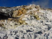 Mammoth Hot Springs imagem de stock royalty free