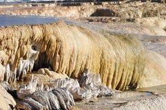 Mammoth Hot Springs 免版税库存图片