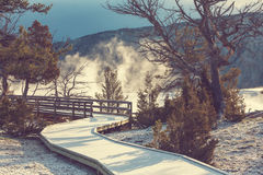Mammoth Hot Springs Image libre de droits