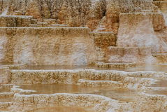 Mammoth Hot Springs 图库摄影