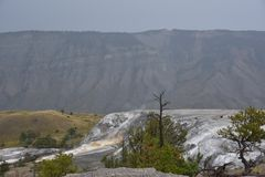 Mammoth Hot Springs au stationnement national de Yellowstone Photo libre de droits