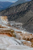 Mammoth Hot Springs Stock Photography