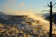 Mammoth Hot Springs dans Yellowstone Photo libre de droits