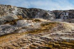 Mammoth Hot Springs en stationnement national de Yellowstone Photos libres de droits