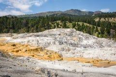 Mammoth Hot Springs Entrada do norte, parque de Yellowstone, EUA Foto de Stock