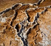Mammoth Hot Springs - geothermal Royalty Free Stock Photos