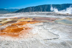 Mammoth Hot Springs, Main Terrace, Yellowstone National Park Stock Photo