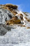 Mammoth Hot Springs in Nationalpark stockfotos