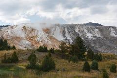 Mammoth Hot Springs no parque nacional de Yellowstone foto de stock