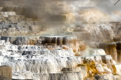 Mammoth Hot Springs no parque nacional de Yellowstone, Wyoming, EUA imagens de stock