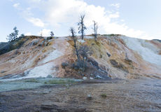 Mammoth Hot Springs in Northern part of Yellowstone National Par Royalty Free Stock Images