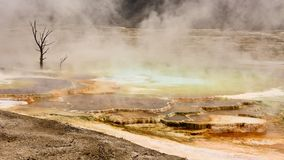 Mammoth Hot Springs Panoramic Royalty Free Stock Images